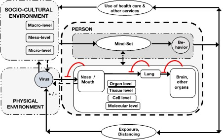 A systems medicine compartment model by Felix Tretter